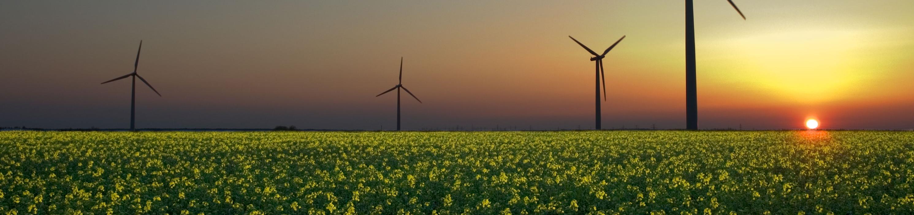 GRREinvest_renewable energy